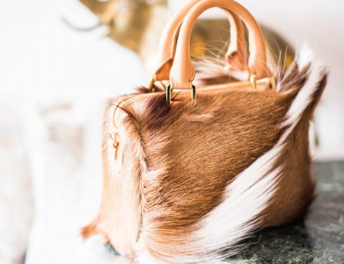 Proper Ways to Care for Your FurHandbag